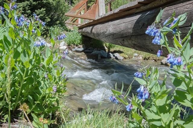 eau de rivière potable ou pas