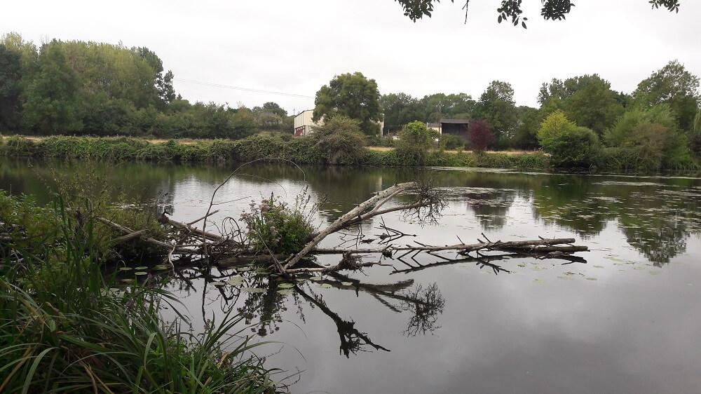 thouet rivière vélo francette