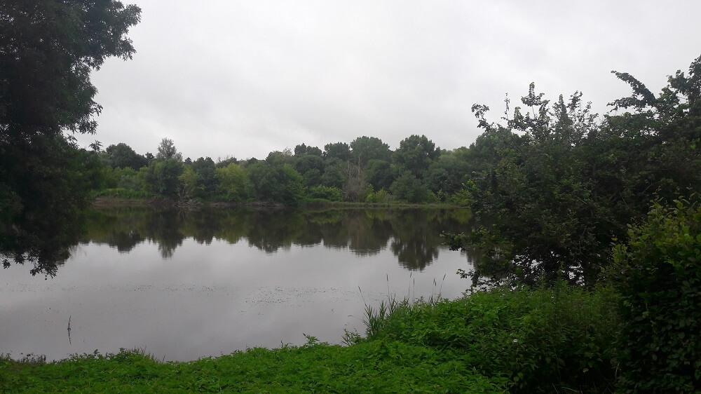 lac sur la loire à vélo